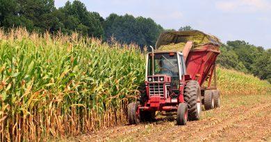 Agroécologie : trois initiatives pour cultiver autrement