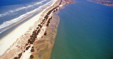 Sénégal : dans la commune de Saint-Louis, la langue de Barbarie est de nouveau menacée par la montée des eaux