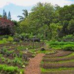 Qu'est-ce que la permaculture ?