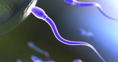 Infertilité masculine : les ondes électromagnétiques des portables et de la WIFI mises en cause