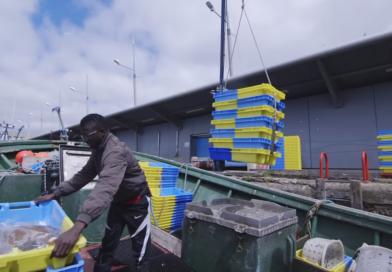 REPORTERS FRANCE 24 : Vidéo : la vague à l'âme, l'odyssée des pêcheurs sénégalais en Bretagne