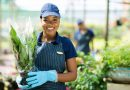 L'agriculture, l'agroalimentaire, l'aviculture et l'environnement : secteurs les plus porteurs d'emplois.