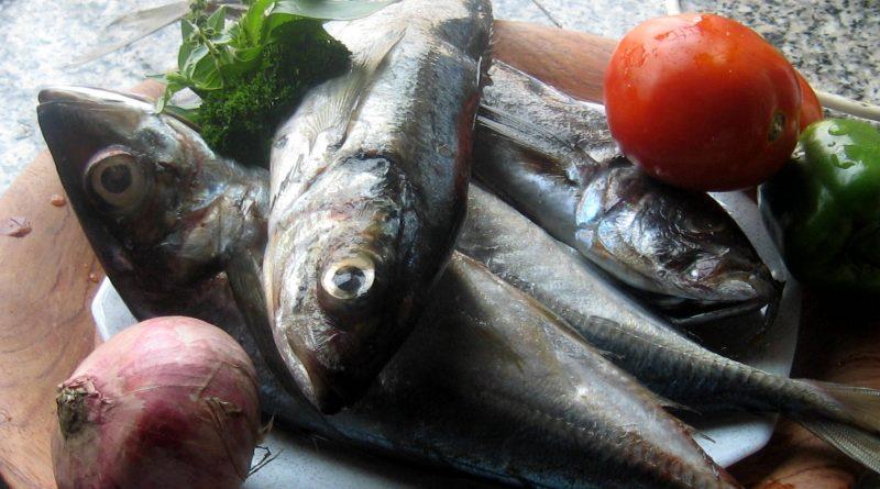Pourquoi manger du poisson est-il bon pour la mémoire ?