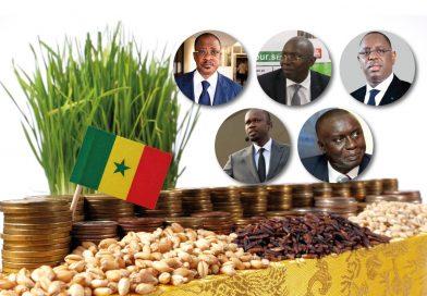 ÉLECTION PRÉSIDENTIELLE AU SÉNÉGAL: L'ENVIRONNEMENT, L'ÉTERNEL OUBLIÉ