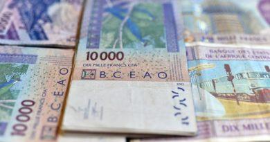 « SEMI-RÉVOLUTION » OU « ARNAQUE POLITIQUE », LA FIN DU FRANC CFA VUE PAR DES ÉCONOMISTES AFRICAINS