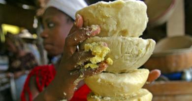 LE BEURRE DE KARITÉ, UNE RESSOURCE AGRICOLE TROP PEU EXPLOITÉE AU NIGERIA
