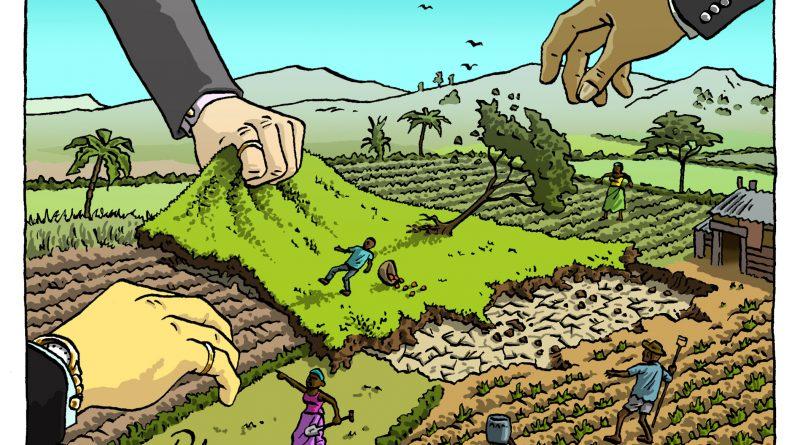 « A MADAGASCAR COMME PARTOUT SUR LE CONTINENT, LES ÉLITES AFRICAINES ACCAPARENT LES TERRES FERTILES »
