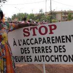 PLUS DE 85 000 HECTARES MENACÉES D'EXPROPRIATION AU CAMEROUN