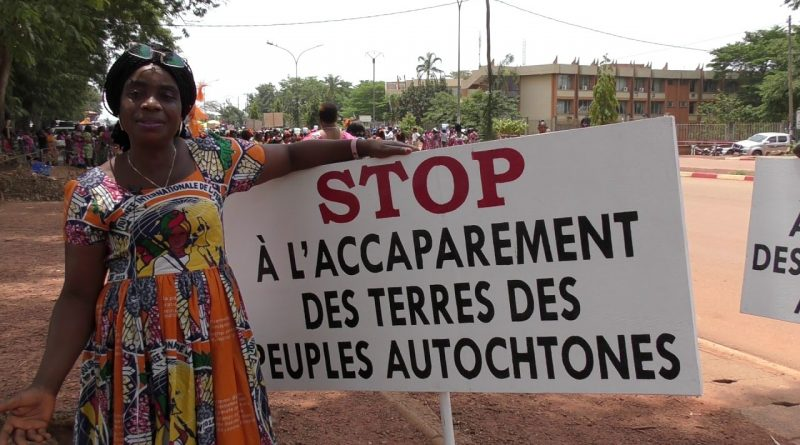 PLUS DE 85 000 HECTARES MENACÉES D'EXPROPRIATION AU CAMEROUN