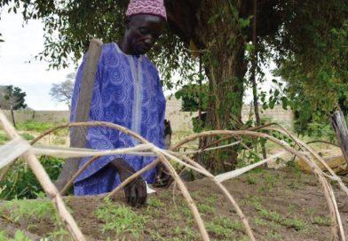 AU SÉNÉGAL, MISER SUR L'AGROÉCOLOGIE POUR UN DÉVELOPPEMENT PLUS DURABLE