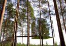 THE MIRRORCUBE : LA FAMEUSE CHAMBRE MIROIR DE TREE HOTEL EN SUÈDE